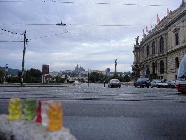 .Bears in Prague