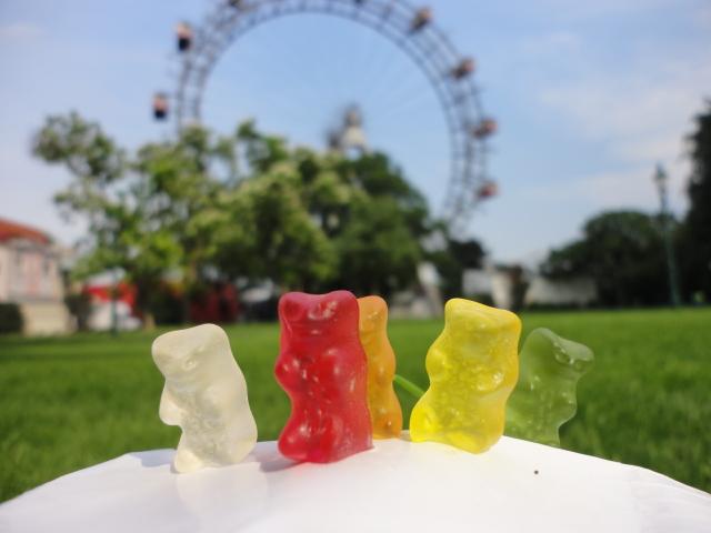 Bears in Vienna