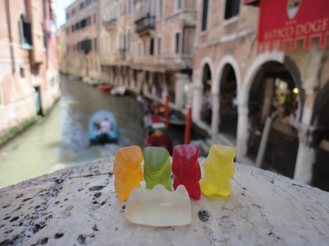 Concerned Bears in Venice