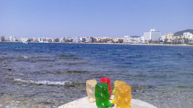 Bears in Ibiza