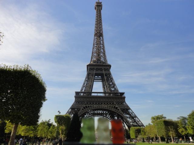 Paris Bears in Paris