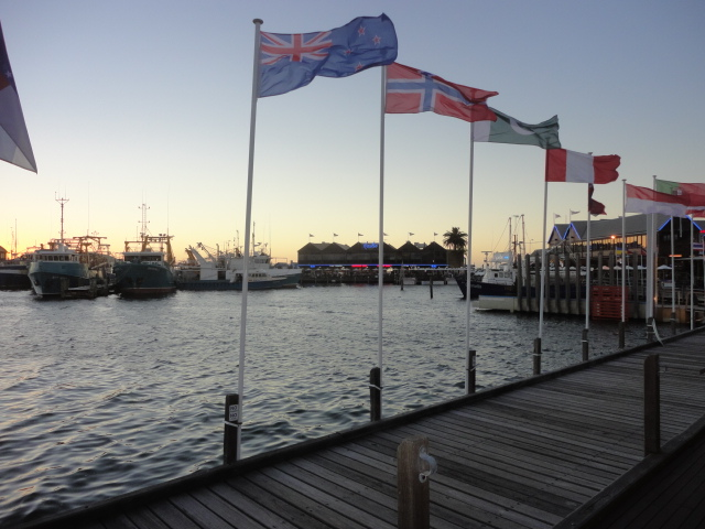 Joe's Fish Shack - 5 Things to do in Fremantle - being30.com