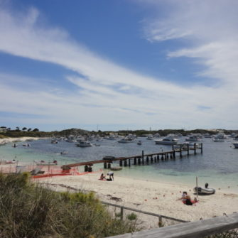 Rottnest Island - 5 Things to do in Fremantle - being30.com