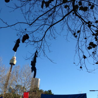 Tree of clothes, city2surf