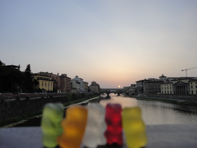 Bears in Florence